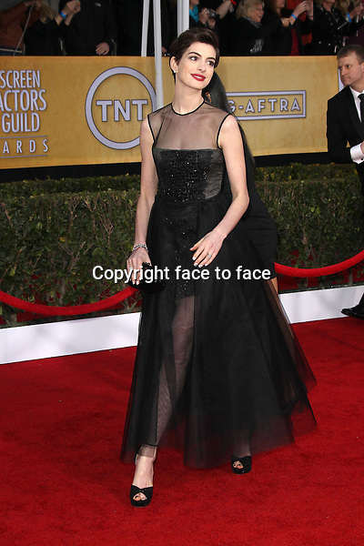 LOS ANGELES, CA - JANUARY 27: Anne Hathaway (super chic in a tulle embellished gown from the Giambattista Valli Couture Spring 2013 collection) at The 19th Annual Screen Actors Guild Awards at the Los Angeles Shrine Exposition Center in Los Angeles, California. January 27, 2013...Credit: MediaPunch/face to face..- Germany, Austria, Switzerland, Eastern Europe, Australia, UK, USA, Taiwan, Singapore, China, Malaysia and Thailand rights only -