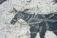 Visual Arts:  Mosaic floor of tomb, detail.  Donkey harness on withers.  Ostia, Rome.