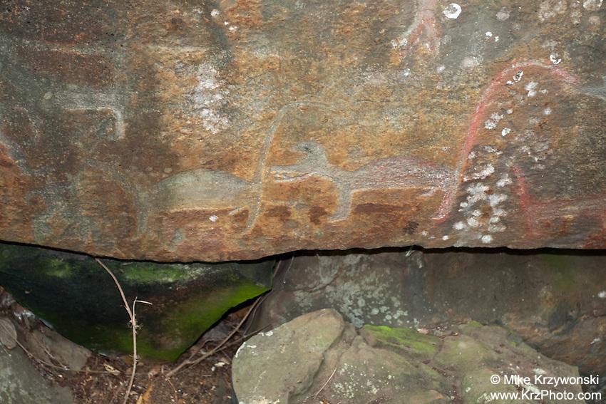 Hawaiian Petroglyphs of dogs, Nuuanu, Honolulu, Oahu, Hawaii