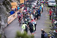 Thomas de Gendt (BEL/Lotto-Soudal) up the Alto de La Cubilla<br /> <br /> Stage 16: Pravia to Alto de La Cubilla. Lena (144km)<br /> La Vuelta 2019<br /> <br /> ©kramon