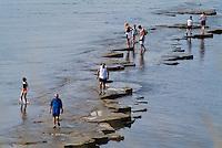 People on one of the Kimmeridge Ledges in Kimmeridge Bay.Views along the South West Coast Path, near Kimmeridge.