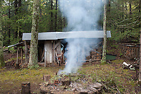 A rustic shed with a corrugated roof houses tools and neat stacks of logs on which the log cabin relies for its heating and hot water