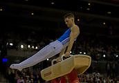 17th March 2019, M&S Arena, Liverpool, England; Gymnastics British Championships day 4; WHITLOCK MBE Max, South Essex Gymnastics Club  Men's Artistic Masters Pommel Final