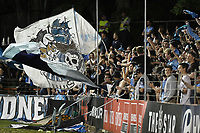 1st November 2019; Leichhardt Oval, Sydney, New South Wales, Australia; A League Football, Sydney Football Club versus Newcastle Jets; Sydney fans celebrate their team opening the scoring to make it 1-0 - Editorial Use