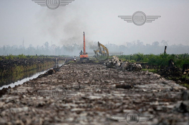 Earth moving machines on a muddy path in an area which has recently been deforested in preparation to expand the Duta Palma palm oil plantation.