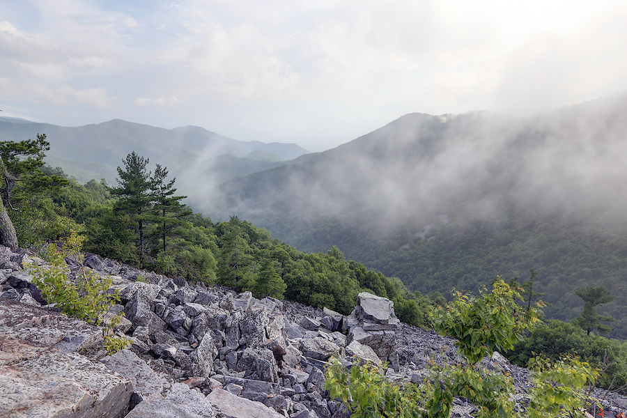 A trip to Black Rock Trail on the Shenandoah National Forest in Madison County, VA. Photo/Andrew Shurtleff