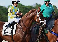 TAMPA, FL - February 10: Flameaway, #2, and Jose Lezcano parade onto the track for the Sam F Davis Stakes (Grade III) at Tampa Bay Downs on February 10, 2018 in Tampa, FL. (Photo by Taylor Gross/Eclipse Sportswire/Getty Images.)