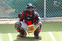 Lansing Lugnuts catcher Javier Hernandez (29) warms up in the bullpen prior to a Midwest League game against the Wisconsin Timber Rattlers on May 8, 2018 at Fox Cities Stadium in Appleton, Wisconsin. Lansing defeated Wisconsin 11-4. (Brad Krause/Four Seam Images)