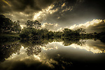A rural  scene with trees and clouds reflected in the calm waters of a lake