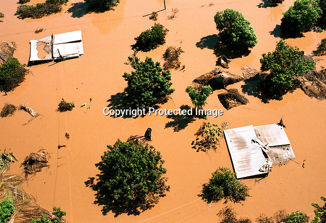 A flooded village close to Chokwe, Mozambique about 200km north of the capital Maputo. The area was heavily destroyed by flooding in February-March 2000;aerial view; trees; tops of houses..©Per-Anders Pettersson/iAfrika Photos