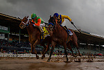 02-10-19- San Vicente Stakes