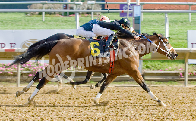 English Girl winning at Delaware Park on 10/17/12