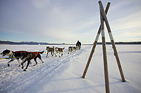 Gerry Willomitzer runs past a tripod trail marker on the Yukon River as he approaches Kaltag on Sunday morning during Iditarod 2008