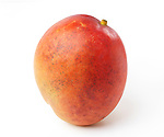 Closeup of a ripe red Kent mango tropical fruit isolated on white background