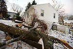 WATERBURY,  CT-012119JS16-  A tree has been cut up and removed from the roof of the Gaylord Drive home of Olga Guerrera on Sunday night. The tree crashed through the roof of the home and caused major damage. <br /> Jim Shannon Republican American