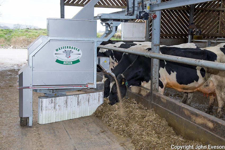 A Wasserbauer Butler automatic feeder and scraper on a dairy farm, Lancashire.