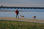 walking the dogs on Ryde seafront
