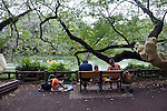 Visitors enjoy a picnic inside Inokashira Park in the trendy neighborhood of Kichijoji in Musashino City,  Tokyo, Japan on 16 Sept. 2012.  Photographer: Robert Gilhooly
