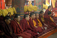 Buddhist Monks Inside old and ancient Monasteries Tibet