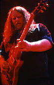 WARREN HAYNES (GOVERNMENT MULE)