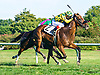 No Wunder winning at Delaware Park on 9/22/16