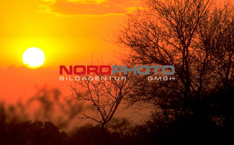 Fussball Weltmeisterschaft 2010  Suedafrika<br /> <br /> EIn Erlebnis ist der Sonnenuntergang im  weltbekannten Kr&uuml;ger Nationalpark welcher von zahlreichen Tierlauten begleitet wird.<br /> Foto &copy; nph (  nordphoto  )<br />  *** Local Caption *** <br /> <br /> Fotos sind ohne vorherigen schriftliche Zustimmung ausschliesslich f&uuml;r redaktionelle Publikationszwecke zu verwenden.<br /> Auf Anfrage in hoeherer Qualitaet/Aufloesung
