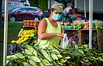 BETHLEHEM , CT-080620JS03—Haley Smith of Daffodil Hill Growers in Southbury, bags up some freshly picked sweet corn for a customer Thursday at the Southbury Farmers Market on the Town Hall Green.<br /> Jim Shannon Republican-American