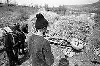 ROMANIA / Maramures / Valeni / April 2003..A peasant ponders how to recover his toppled horse cart. ..© Davin Ellicson / Anzenberger..
