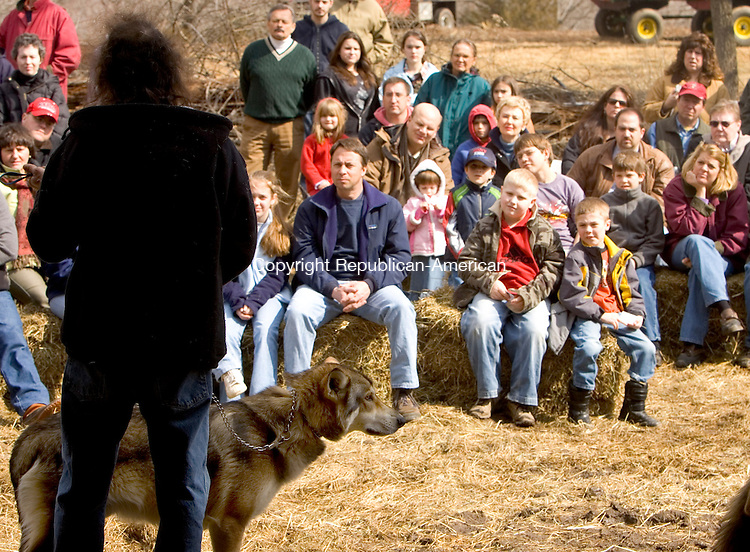 SOUTHBURY, CT--11 MARCH 2007--031107JS02- Michael LeBlanc of Wolf Talk Educational Programs, left, holds onto Denahee, a 15-month-old Timber Wolf as he speaks to a crowd during a lecture Sunday at Phillips Farm in Southbury. The program was organized by the Southbury Land Trust. <br /> Jim Shannon / Republican-American