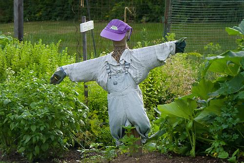 Scarecrow in Childrens garden, Yarmouth Community Garden, Maine, USA
