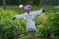 Scarecrow in Childrens garden, Yarmouth Community Garden, Maine, USA