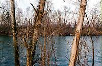 Il fiume Adda presso Rivolta d'Adda (Cremona) --- The river Adda near Rivolta d'Adda (Cremona)