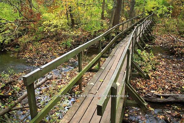An Old, Rickety Wooden Foot Bridge Over A Stream In A Forest Ablaze With The Colors Of Autumn, Glen Helen Nature Preserve; Yellow Springs Ohio, USA