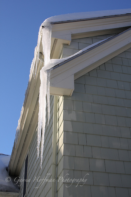 Long icicles dripping off house.