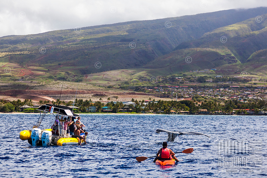 Tourists on a whale-watching boat and a kayaker have a close encounter with a humpback whale off the coast of Maui.