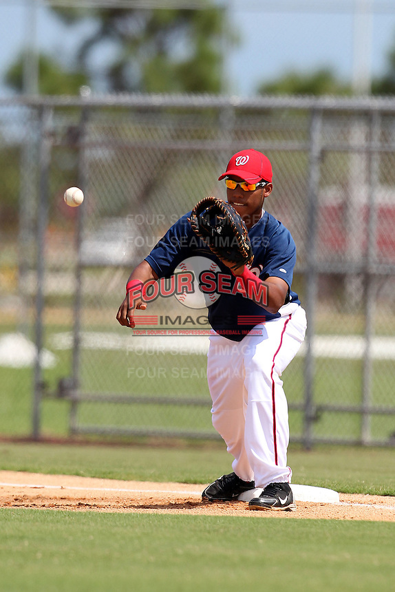 Washington Nationals first baseman Arialdi Peguero #15 during an Instructional League game against the national team from Italy at Carl Barger Training Complex on September 28, 2011 in Viera, Florida.  (Mike Janes/Four Seam Images)
