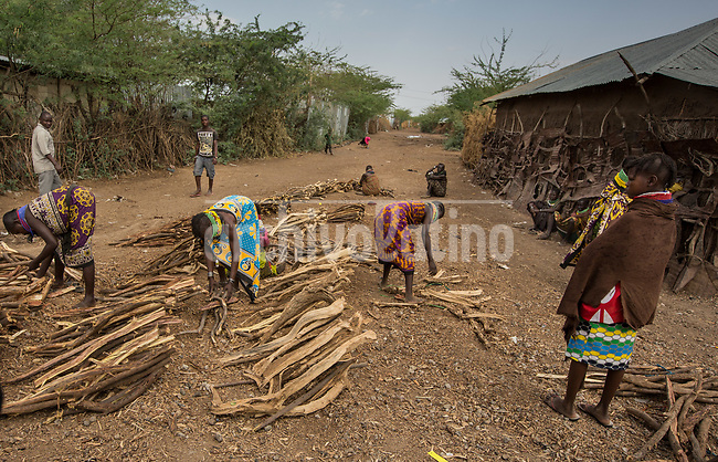 Wood for fire, a very scarse good in   Kakuma, Kenya.Kakuma refugee camp in North of Kenya. Kakuma is the site of a UNHCR refugee camp, established in 1991. The population of Kakuma town was 60,000 in 2014, having grown from around 8,000 in 1990. In 1991, the camp was established to host the 12,000 unaccompanied minors who had fled the war in Sudan and came walking from camps in Ethiopia.