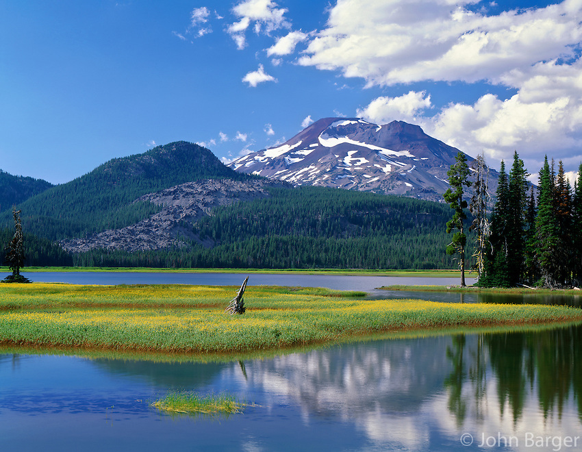 ORCAC_078 - USA, Oregon, Deschutes National Forest, Leafy arnica blooms on an island in Sparks Lake with South Sister rising in the distance.