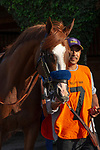 """DEL MAR, CA  AUGUST 24: #7 Catalina Cruiser, ridden by Flavien Prat, in the paddock before the Pat O'Brien Stakes (Grade ll) """"Win and You're In Breeders' Cup Dirt Mile Division"""" on August 23, 2019 at Del Mar Thoroughbred Club in Del Mar, CA.  ( Photo by Casey Phillips/Eclipse Sportswire/CSM)"""