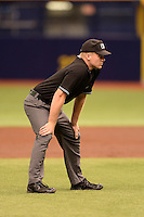 Umpire Matt Winter during an Instructional League game between the Boston Red Sox and Tampa Bay Rays on September 25, 2014 at the Tropicana Field in St. Petersburg, Florida.  (Mike Janes/Four Seam Images)