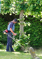 Nederland  - Nieuwersluis - 2020. Man maait de berm.  Foto Berlinda van Dam / Hollandse Hoogte