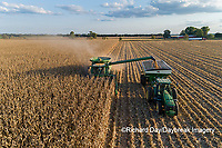 63801-12901 Harvesting corn and unloading into grain cart in fall-aerial  Marion Co. IL