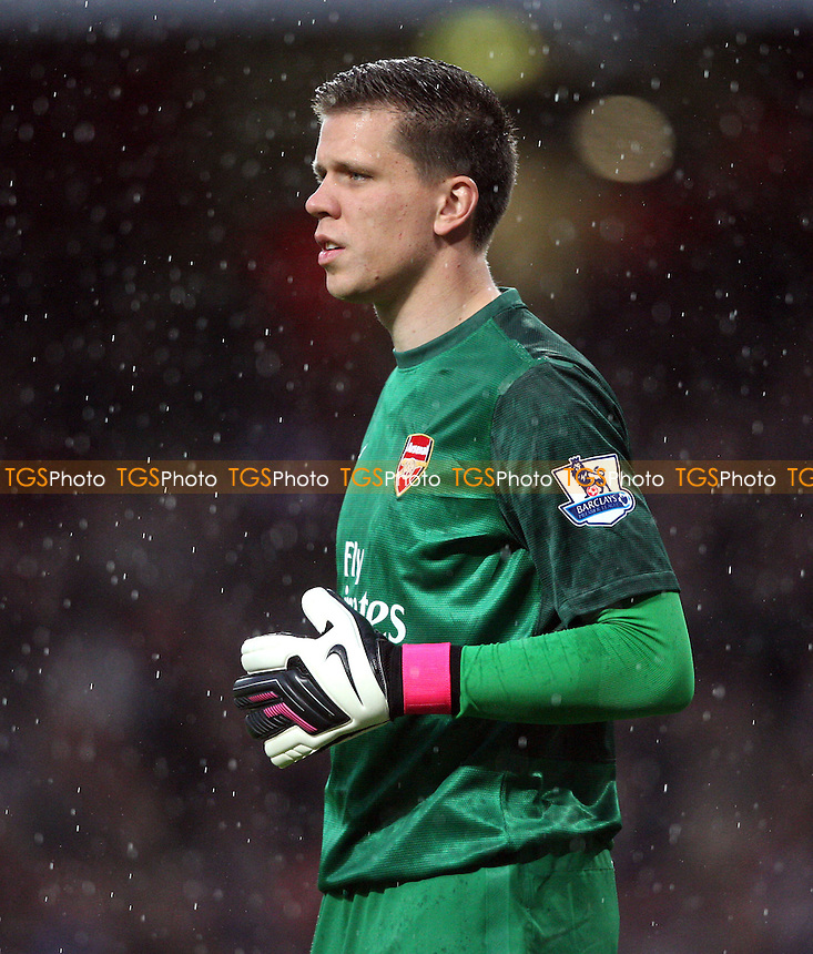 Wojciech Szczesny of Arsenal - Arsenal vs Wigan Athletic, Barclays Premier League at the Emirates, Arsenal - 12/05/13 - MANDATORY CREDIT: Rob Newell/TGSPHOTO - Self billing applies where appropriate - 0845 094 6026 - contact@tgsphoto.co.uk - NO UNPAID USE.
