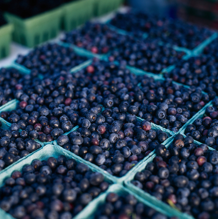 Pints of blueberries for sale at the Portland Farmers Market
