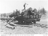 3/4 view of men loading a logging flat car by the cross-haul method.<br /> Pagosa Lumber Co.  near Pagosa Springs, CO  ca. 1910