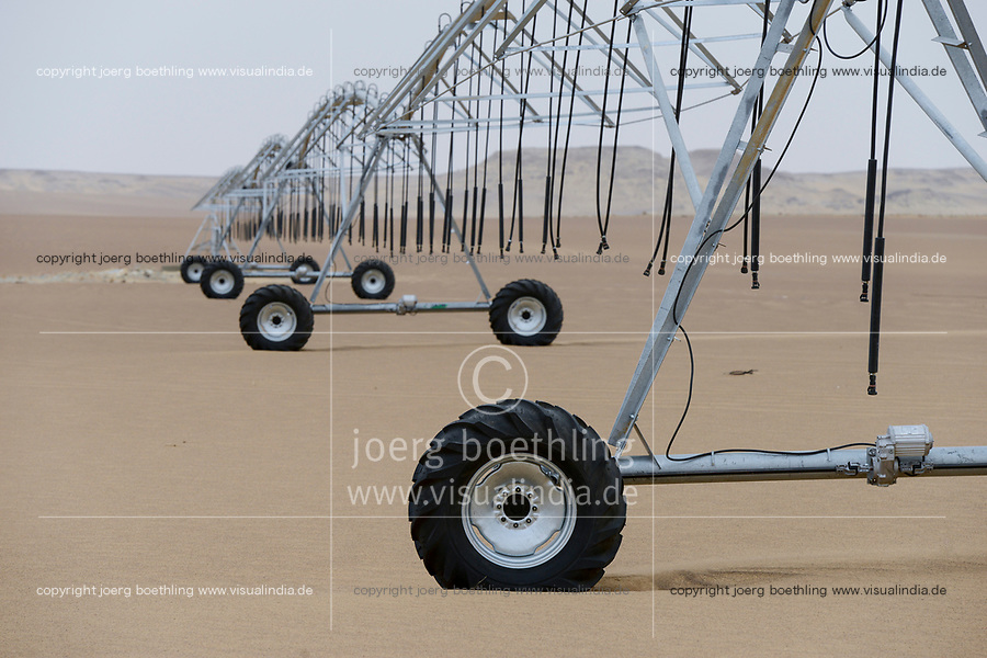 EGYPT, Bahariyya Oasis, desert farming , Center Pivot irrigation for a new round field in the desert sand, the water is pumped from 1000 metres deep borewells using fossile water of the Nubian Sandstone Aquifer