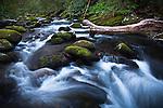 Spring flow on Roaring Fork