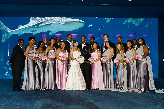georgia aquarium wedding of dj shockley and portia