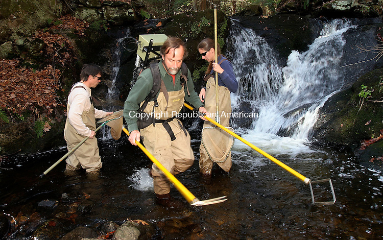 WATERTOWN, CT-31November 2006-110106TK05- (left to right) Tim Barry, Mike Humphreys and Lacey Wood of the Connecticut DEP Fisheries Division  use a electric stimulus impulse to stun native brook trout on the Jericho Brook that runs through the Mattatuck State Forest in Watertown. Tom Kabelka Republican-American (Tim Barry, Mike Humphreys, Lacey Wood)