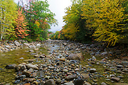 Autumn foliage along a section of the rocky East Branch of the Pemigewasset River, near Lincoln Village, in Lincoln, New Hampshire on a cloudy and rainy autumn day.